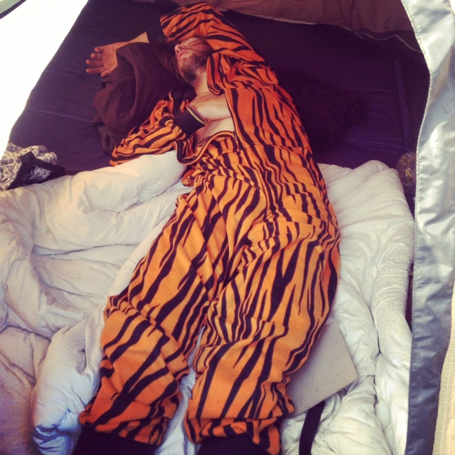 Tiger onesie enjoying the tent