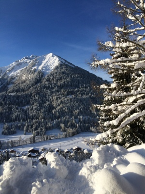 fottles-travels-ski-trip-chatel-france